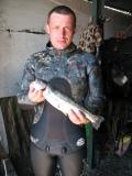 Черноморский лосось